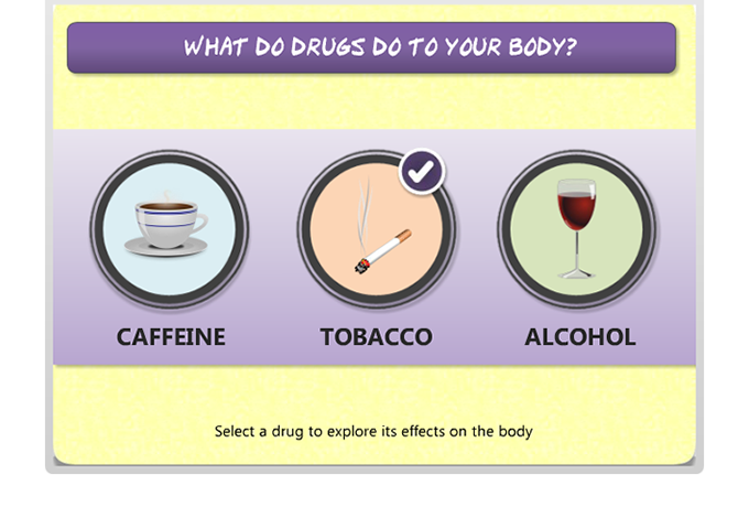 Drug Education eBookbox - What do drugs do to your body menu